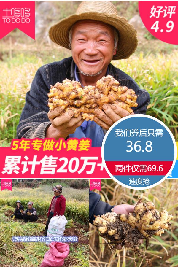 【第2件減5】云南羅平小黃姜新鮮生姜5斤