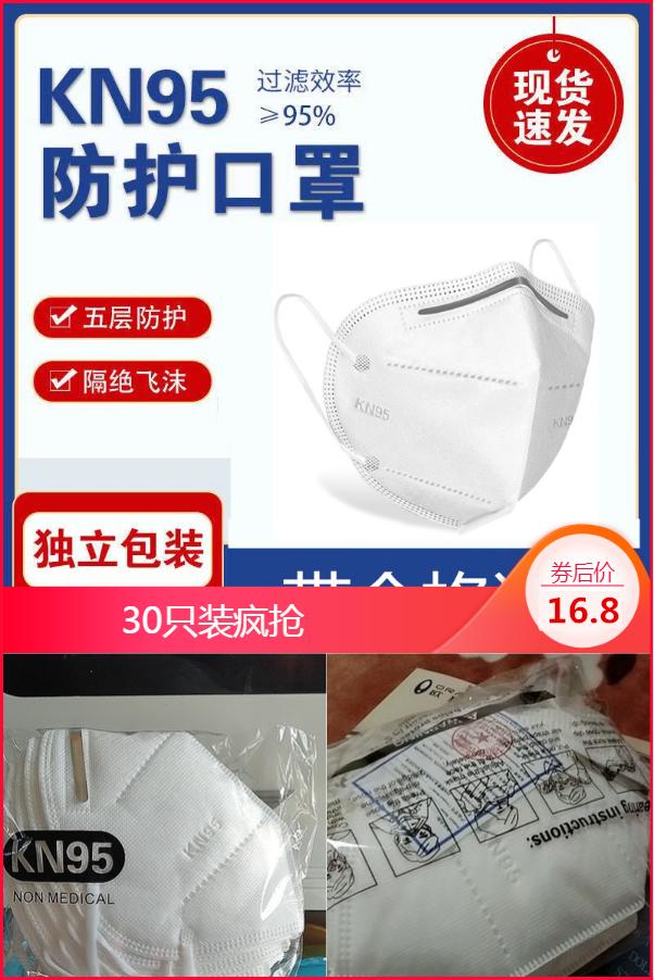 【30只装】高质熔喷布KN95五层口罩
